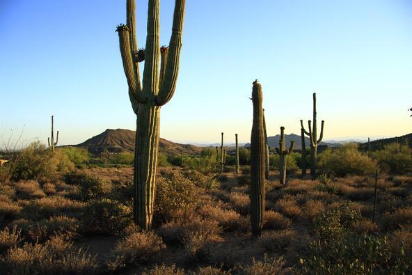 9873 E. Honey Mesquite Dr. 135, Scottsdale, AZ 85262 Photo 3