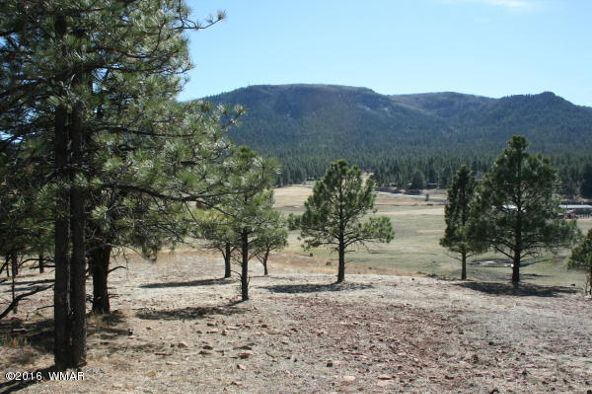 14 Cr 2155, Alpine, AZ 85920 Photo 168