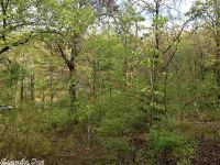 Home for sale: Lot 27 Oak Dr., Conway, AR 72032