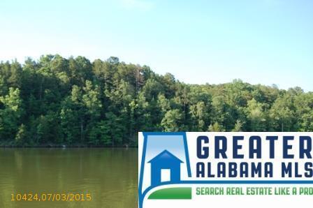 13 Rock Creek Co Rd. 4312, Wedowee, AL 36278 Photo 7