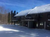 Home for sale: 60 Drumleys North Rd. Ext Unit #27, Warren, VT 05674