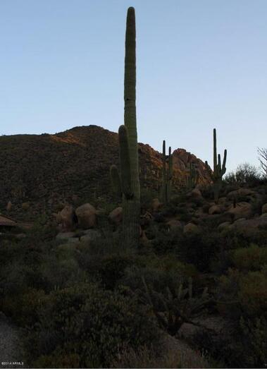 42223 N. 108th Pl., Scottsdale, AZ 85262 Photo 23