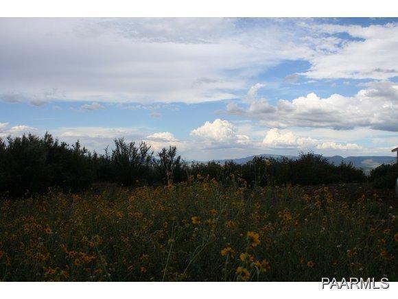 400 N. Flying Fox Trail, Prescott, AZ 86303 Photo 3