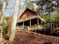 Home for sale: 300 Brookwood Ln., Clarkesville, GA 30523