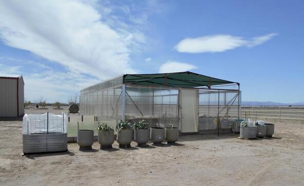 4075 W. Webb, Elfrida, AZ 85610 Photo 27