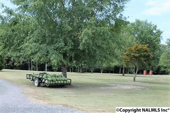 6852 County Rd. 52, Dawson, AL 35963 Photo 47