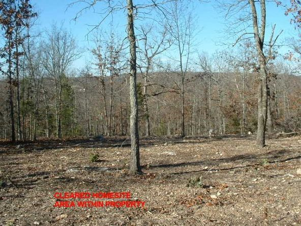 Lts 83-86 Linwood Dr., Briarcliff, AR 72653 Photo 4