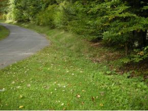 1170 Tracy Creek Rd., Vestal, NY 13850 Photo 3