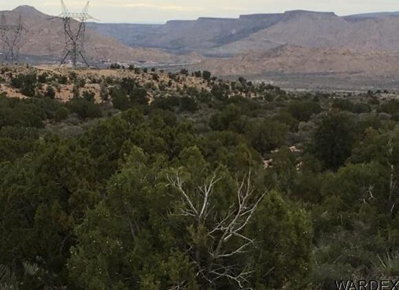 7340 N. Frerichs Ranch Rd., Hackberry, AZ 86411 Photo 6