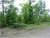 Home for sale: Lot 4 Off Us 41, Mohawk, MI 49950
