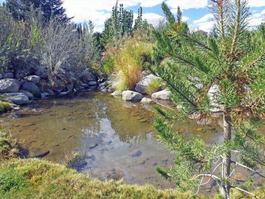 800 S. Barlow Ln., Bishop, CA 93514 Photo 38