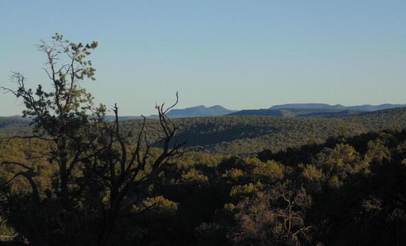 496 High Sierra, Seligman, AZ 86337 Photo 1