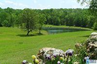 Home for sale: 5744 Spring Creek Rd., Montevallo, AL 35115