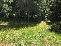 Home for sale: 15971 Forest Hill Dr., Boulder Creek, CA 95006