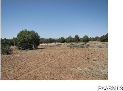 292 Sabrina, Ash Fork, AZ 86320 Photo 11