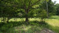 Home for sale: (Lot 4) State Route 55, Neversink, NY 12765
