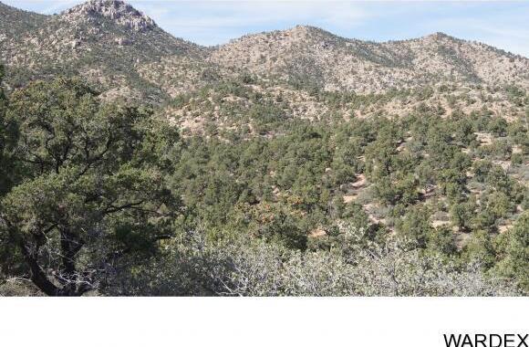 6731 N. Trap Springs Rd., Hackberry, AZ 86411 Photo 26
