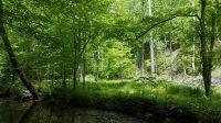 Home for sale: 0 Muddy Fork Rd., Bassett, VA 24055