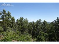 Home for sale: 4054 Forest Ln., Larkspur, CO 80118