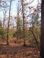 Home for sale: Lot 32 Timber Ridge Estates, Fair Grove, MO 65648