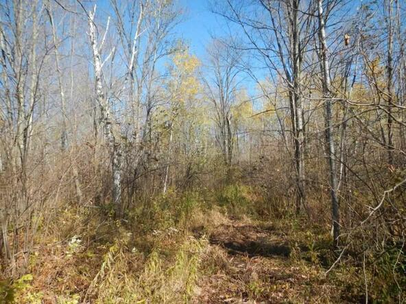 Off Township Corners Rd., Kennan, WI 54537 Photo 12