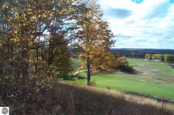 0019 Heather Ridge Trail, Beulah, MI 49617 Photo 6