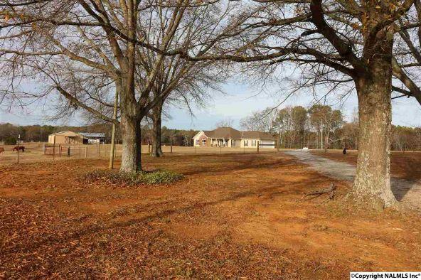 314 Neel School Rd., Danville, AL 35619 Photo 30