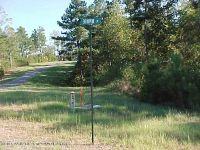Home for sale: Lot # 8 Brushy Creek Main, Arley, AL 35541