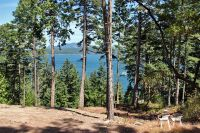 Home for sale: Mineral Point Rd., Friday Harbor, WA 98250