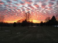 Home for sale: 1.77 Ac Stony Ridge Cir., Verona, WI 53593