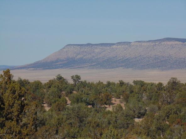 57154 N. Bridge Canyon Parkway, Seligman, AZ 86337 Photo 11