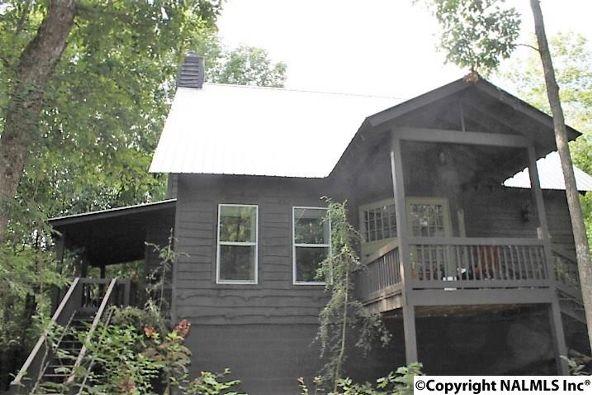 493 Cove Rd., Mentone, AL 35984 Photo 3