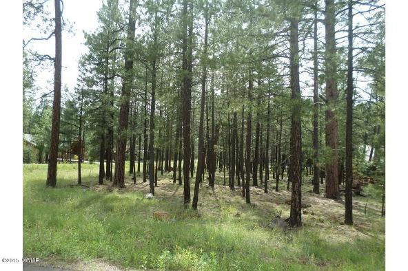 7828 Buck Springs Rd., Pinetop, AZ 85935 Photo 2