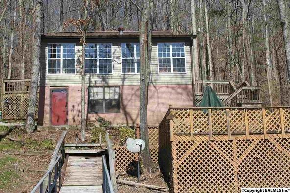 6332 County Rd. 40, Arley, AL 35541 Photo 29