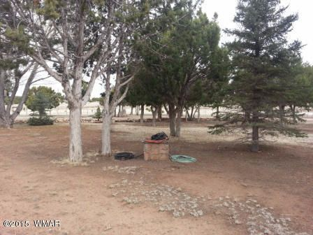6614 Dennys Way, Show Low, AZ 85901 Photo 62