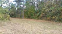 Home for sale: Coker Rd.,, Eastanollee, GA 30565