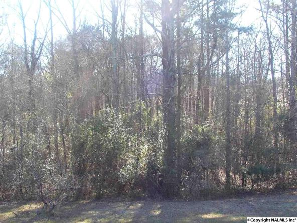 4521 Smith Rd., Southside, AL 35907 Photo 8