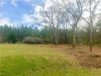 Home for sale: Lot 9 Glendale Acres ., Eclectic, AL 36024