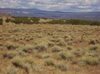 Home for sale: Lot 7 Piedra Lumbre, Youngsville, NM 87510