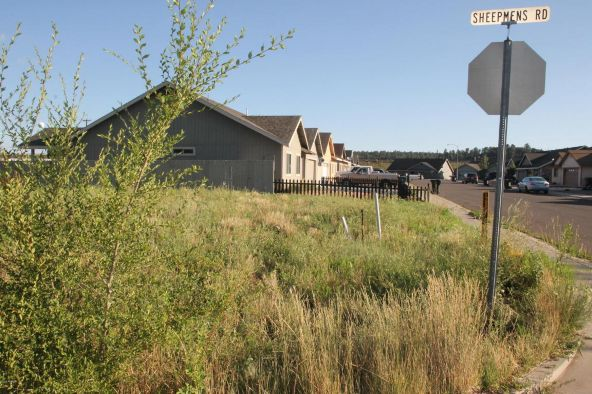 901 Quarter Horse Rd., Williams, AZ 86046 Photo 1