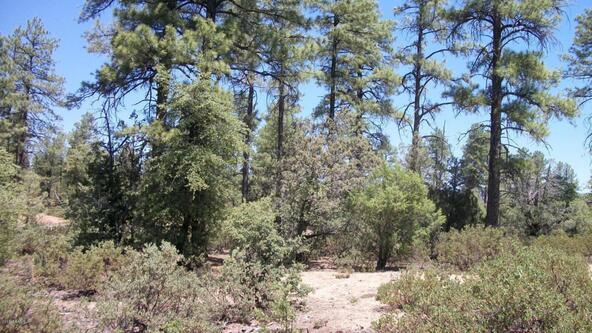 509 N. Chaparral Pines Dr., Payson, AZ 85541 Photo 14
