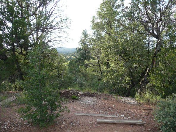 8b N. Chamberlain Trail, Young, AZ 85554 Photo 2