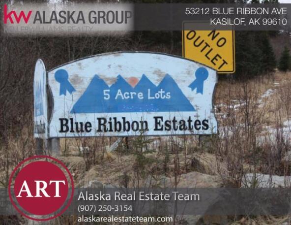 53212 Blue Ribbon Avenue, Kasilof, AK 99610 Photo 2