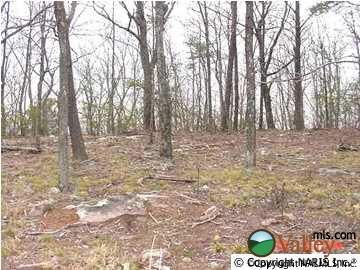 4200 Citadel Rock Rd., Fort Payne, AL 35967 Photo 3