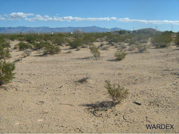 16235 S. Shep Ln. S, Yucca, AZ 86438 Photo 2