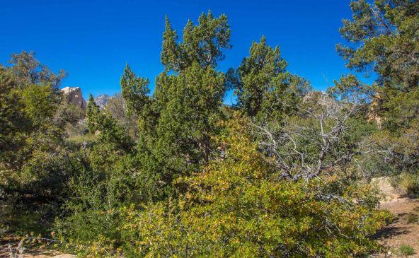 9880 N. Clear Fork Rd., Prescott, AZ 86305 Photo 75