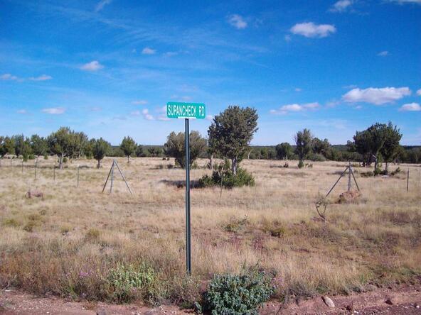2181 Mcgihom Rd., Show Low, AZ 85901 Photo 2