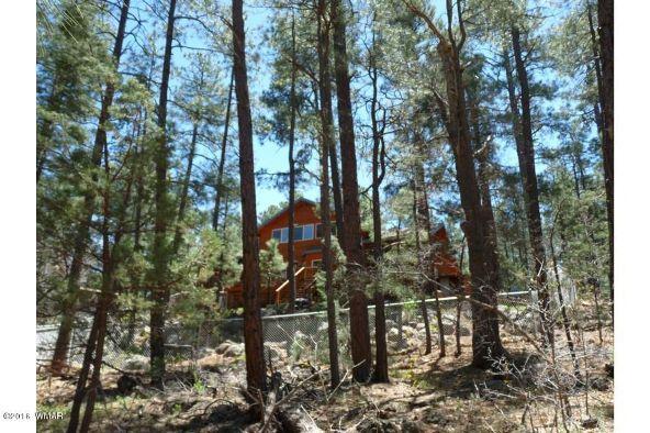 920 W. Billy Creek Dr., Lakeside, AZ 85929 Photo 41