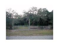 Home for sale: 14090 Mossy Hammock Ln., Myakka City, FL 34251