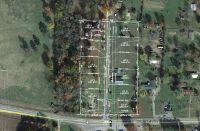 Home for sale: 6 del Ware Ln., Delaware, AR 72835